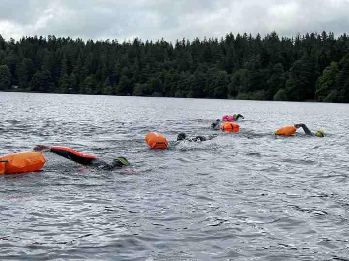 Les marcheurs s'essaient à la nage
